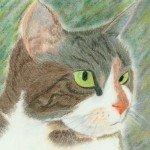 mon chat joséphine